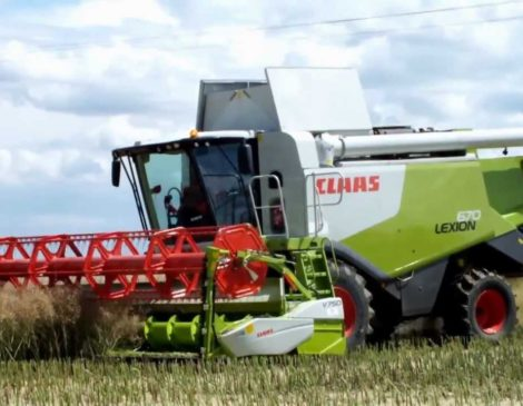 Claas LEXION 670-620 Combine Harvester - Darin Srl